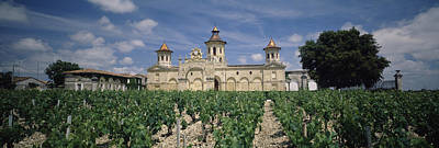 Food And Drink Photograph - Vineyard In Front Of A Castle, Chateau by Panoramic Images