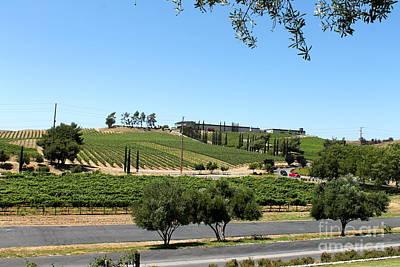 Wine Corks Royalty Free Images - Vineyard in Temecula Royalty-Free Image by Pamela Walrath