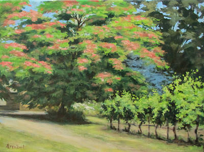Painting - Vineyard Mimosa by Karen Ilari