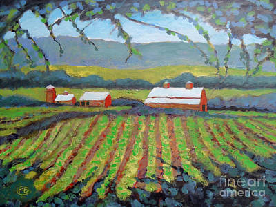 Napa Valley Vineyard Painting - Vineyard View by Kip Decker