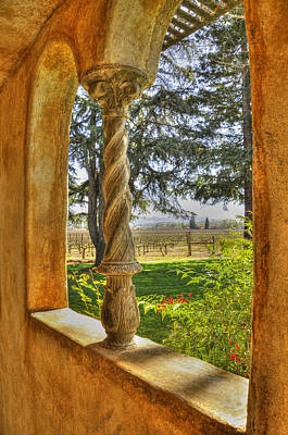 Andretti Photograph - Vineyard View by Wendy Elliott