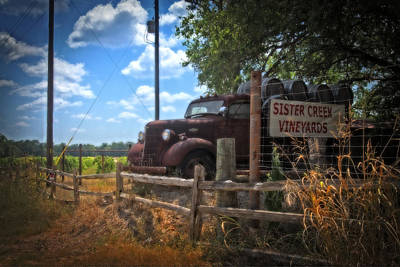 Photograph - Vineyard Welcome by Lynn Bauer