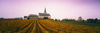 Winemaking Photograph - Vineyard With A Church by Panoramic Images