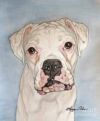 Dog Painting - Vinnie The White Boxer by Megan Cohen