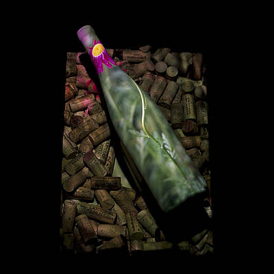 Photograph - Vino Nouveau With Length by Doug Davidson