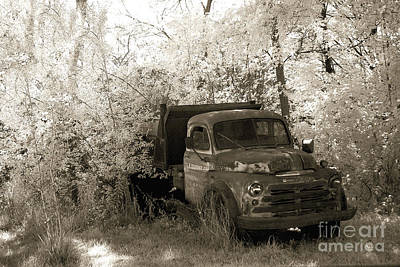 Vintage Truck Photograph - Vintage American Dodge Truck - Abandoned Vintage American Truck Sepia Print by Kathy Fornal