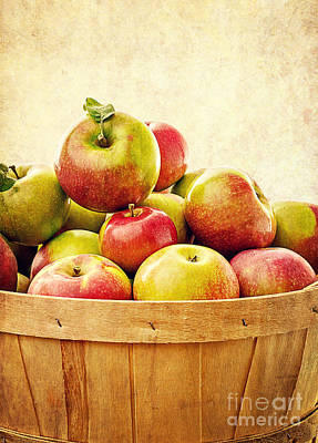 Food And Beverage Royalty-Free and Rights-Managed Images - Vintage Apple Basket by Edward Fielding
