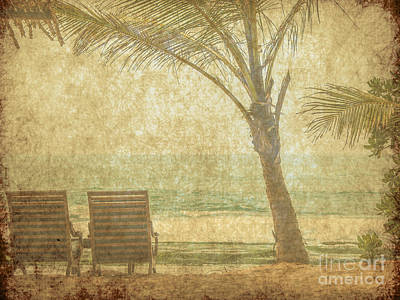 Shark Art - Vintage beach image by Patricia Hofmeester