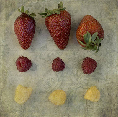 Photograph - Vintage Berry  by Cathie Richardson