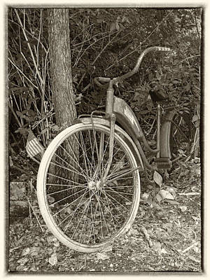 Photograph - Vintage Bike In Woods by Susan OBrien