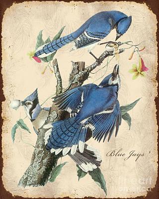 Blue Jay Digital Art - Vintage Bird Study-f by Jean Plout