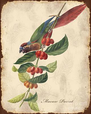 Vintage Bird Study-h Original