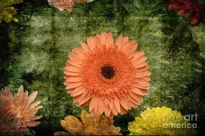 Genus Digital Art - Vintage Blooms by Luther Fine Art