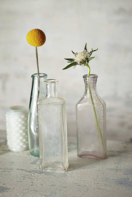 Fragility Photograph - Vintage Bottles And Flowers by Lew Robertson
