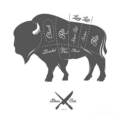 Digital Art - Vintage Butcher Cuts Of Bison Buffalo by Ivan Baranov