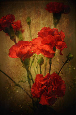 Photograph - Vintage Carnations by Susan  McMenamin