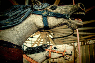 Photograph - Vintage Carousel Horses 001 by Tony Grider