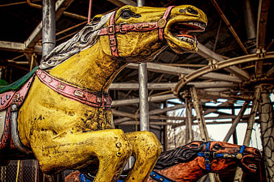 Photograph - Vintage Carousel Horses 007 by Tony Grider