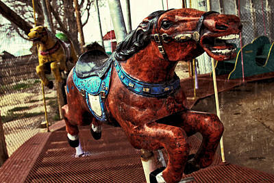 Photograph - Vintage Carousel Horses 008 by Tony Grider