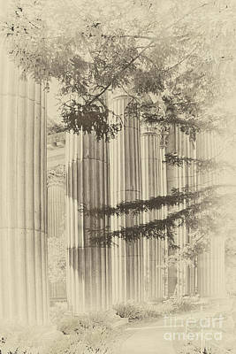 Photograph - Vintage Columns by David Doucot