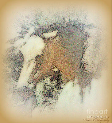 Photograph - Vintage Digital Mustang Painting by Bobbee Rickard