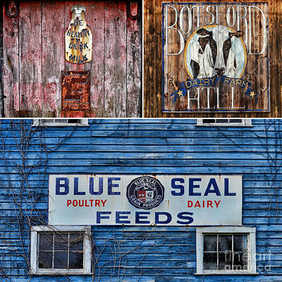 New England Dairy Farms Photograph - Vintage Farm Signs by Sabine Jacobs