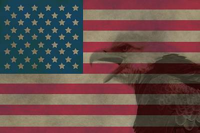 Vintage Flag With Bald Eagle Art Print by Dan Sproul
