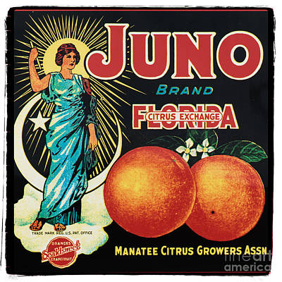 Florida Cracker Photograph - Vintage Florida Food Signs 1 - Juno Brand - Square  by Ian Monk