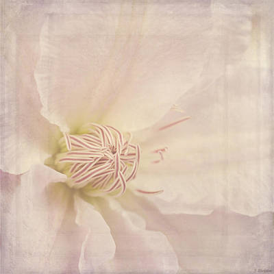 Vintage Flower Art - A Beautiful Place Art Print