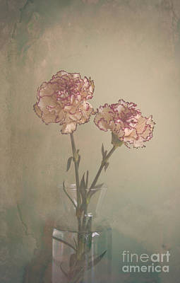 Photograph - Vintage Flowers by Victoria Herrera