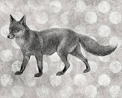 Fox Digital Art - Gray Fox by Flo Karp