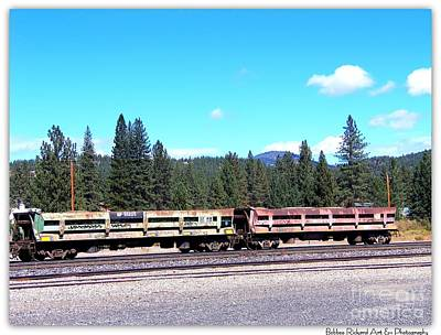 Photograph - Vintage Freight Train Cars by Bobbee Rickard