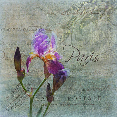 Photograph - Vintage French Iris  by Carla Parris