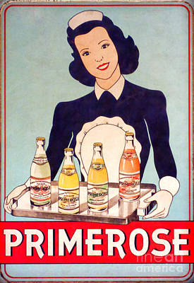 Carbonated Photograph - Vintage French Tin Sign Primerose by Olivier Le Queinec