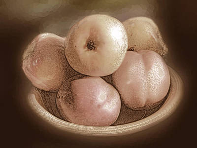 Photograph - Vintage Fruit by Ginny Schmidt
