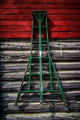 Vintage Fruit Ladder Art Print by Chuck De La Rosa