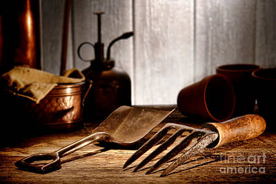 Vintage Gardening Tools Art Print by Olivier Le Queinec