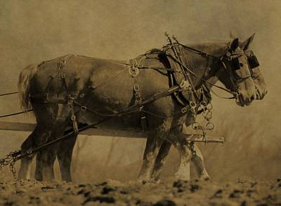 Draft Horses Photograph - Vintage Horse Plow by Dan Sproul
