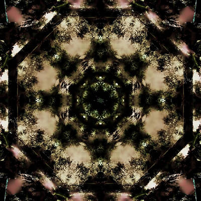 Abstract Digital Art - Vintage Lace by Betsy Jones