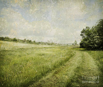 Aged Wood Digital Art - Vintage Landscape by Jelena Jovanovic