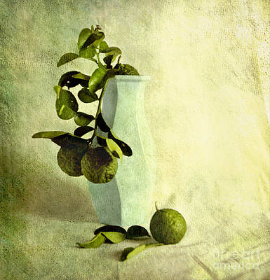 Vintage Limes Art Print by Linde Townsend