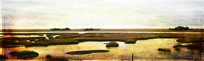 Photograph - Vintage Marsh Panorama Image Art by Jo Ann Tomaselli