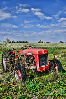 Antique Tractors Photograph - Vintage Massey-ferguson Tractor by Paul Ward