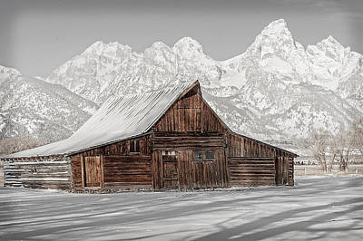 Barns In Snow Photograph - Vintage Moulton's Barn by Barbara Hayton
