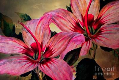 Vintage Painted Pink Lily Art Print by Judy Palkimas