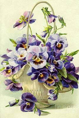 Nikki Vig Royalty-Free and Rights-Managed Images - Vintage Pansy Flower Basket by Nikki Vig