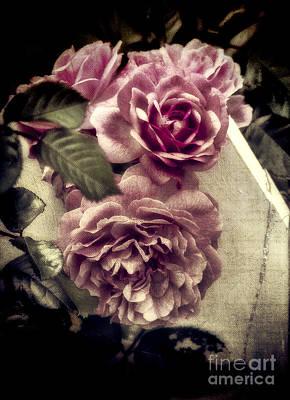 Photograph - Vintage Pink Sisters by Karen Lewis