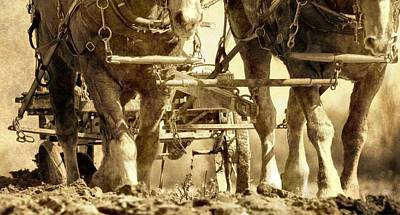 Draft Horses Photograph - Vintage Plough by Dan Sproul