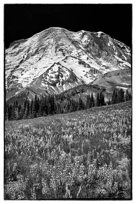 Photograph - Vintage Rainier by David Patterson