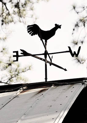 Weathervane Photograph - Vintage Rooster Weathervane  by Rebecca Brittain